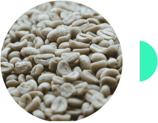 Café en grano de Ruanda Huye Koakaka