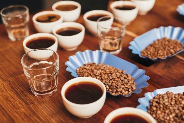 Evaluación del café